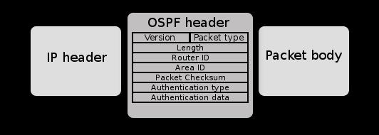 Ospf-header.png