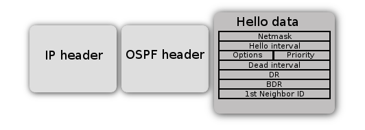 OSPF Hello packet