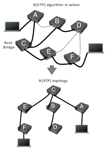 Rstptopology.png